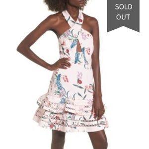 Keepsake Indulge Halter Floral Dress Sz S/2-4 NWT